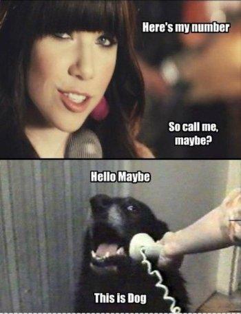 Cane parlante